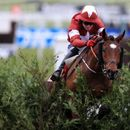 Injury setback for Grand National hero Tiger Roll