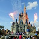 Five tips for first time Disney World visitors including the special badge that gets you extra perks