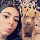 Teen writes hilarious CV to convince her mum to buy her a puppy for Christmas