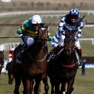 Number 50: Popular hurdler Get Me Out Of Here took punters on a rollercoaster ride at Cheltenham