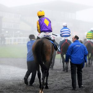 Exeter tips: Racecard, analysis and preview for the feature contest on Tuesday