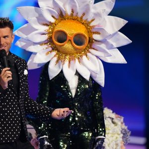 The Masked Singer is a guessing game, but it's good to watch… I guess