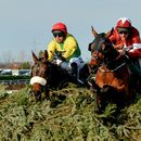 Gigginstown's racing manager confirms Tiger Roll WILL run in the Grand National at Aintree