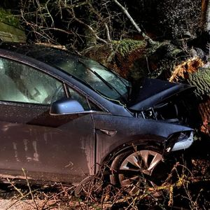 Families escape after Tesla Model X's automatic brakes stopped a falling tree from crushing them during Storm Dennis