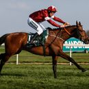 Tiger Roll – Horse racing odds: 40/1 to win at Cheltenham