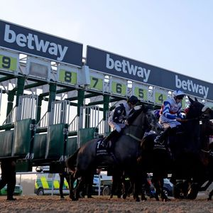 Wolverhampton races: tips, racecards and preview for the Lady Wulfruna Stakes meeting on Saturday