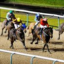Racing tips: Lincoln Trial trends – we help you find the winner of the Wolverhampton race live on ITV