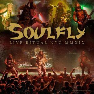 """Още едно концертно видео от SOULFLY - """"Under Rapture"""""""