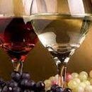 Вино фест започнува во четврток