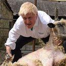 Британскиот премиер стриже овци, вози формула, продава колачи, игра фудбал...