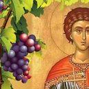 Светиот маченик Трифун - заштитник на лозарите