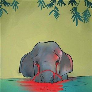 Нема крај на човековото наси..о кон животните