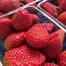 Јадете по 10 јагоди секој ден и ќе бидете изненадени од резултатите