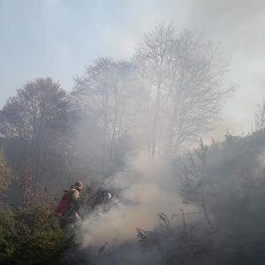 Шара и полошките ниви во месец ноември пеплосани од пиромани и палење на стрништа