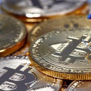 """""""Копачите"""" и тргувачите со криптовалути имаат одврзани раце"""