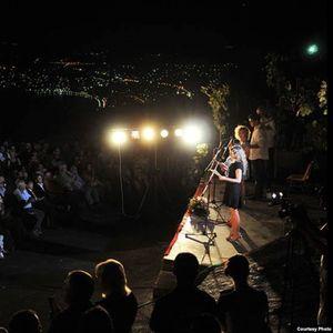 """Триесеттата Поетска ноќ во Велестово """"заборавена"""" од државата"""