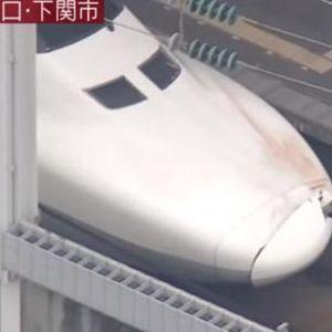 Слушнал необичен звук од локомотивата но го игнорирал – Полицијата затекнала вистински ужас (ВИДЕО)