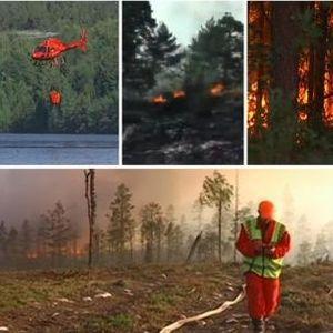 Шведска ја зафати голем пожар – пламенот се шири кон Стокхолм (ВИДЕО)
