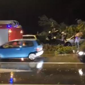 (Видео) Еден мртов, откорнати дрвја и покриви по силната бура што ја погоди Хрватска