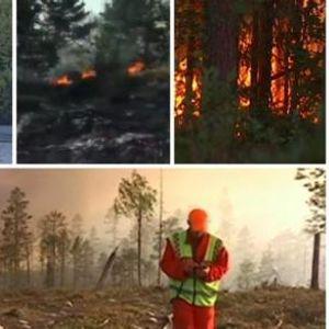 Голем пожар ја зафати Шведска: Пламенот се шири кон Стокхолм (видео)