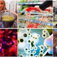 6 највалкани јавни места каде треба да бидете повнимателни за да останете здрави