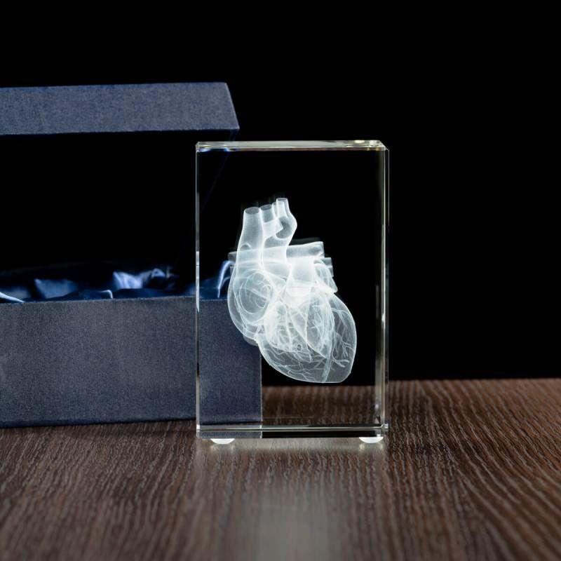 Model serca wygrawewany w statuetce, prezent dla lekarza - Studio3D