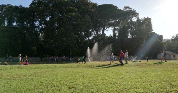 Blog | Palermo, il Parco Villa Tasca è un'oasi verde di civiltà dove connettersi con la natura e l'umanità - Il Fatto Quotidiano