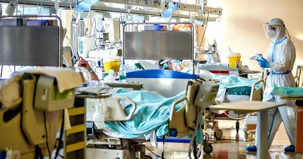 Coronavirus, i dati di oggi - 13.447 casi e 476 morti: oltre 115mila vittime da inizio pandemia. Ancora giù ricoveri e terapie intensive - Il Fatto Quotidiano