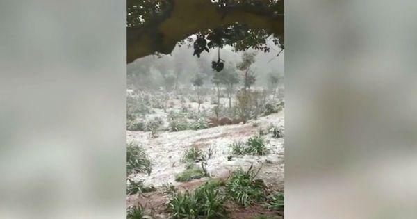 Sardegna, primo giorno di primavera con la neve: fiocchi bianchi dai 1200 metri - Video - Il Fatto Quotidiano