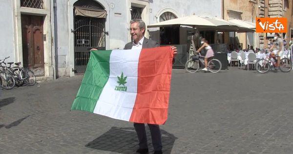 Referendum sulla cannabis, Della Vedova (+Europa): In grandi Paesi democratici come Usa e Canada è legale e le cose vanno meglio - Il Fatto Quotidiano