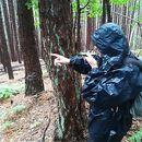 Владимир Иванов, WWF: Има натиск и нагласи срещу това ние да си сътрудничим добре с държавата