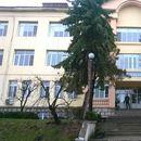 Ще има ли конкурс за избор на управител на Белоградчишката болница