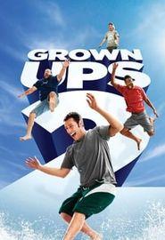 Copains pour toujours 2 (2013)