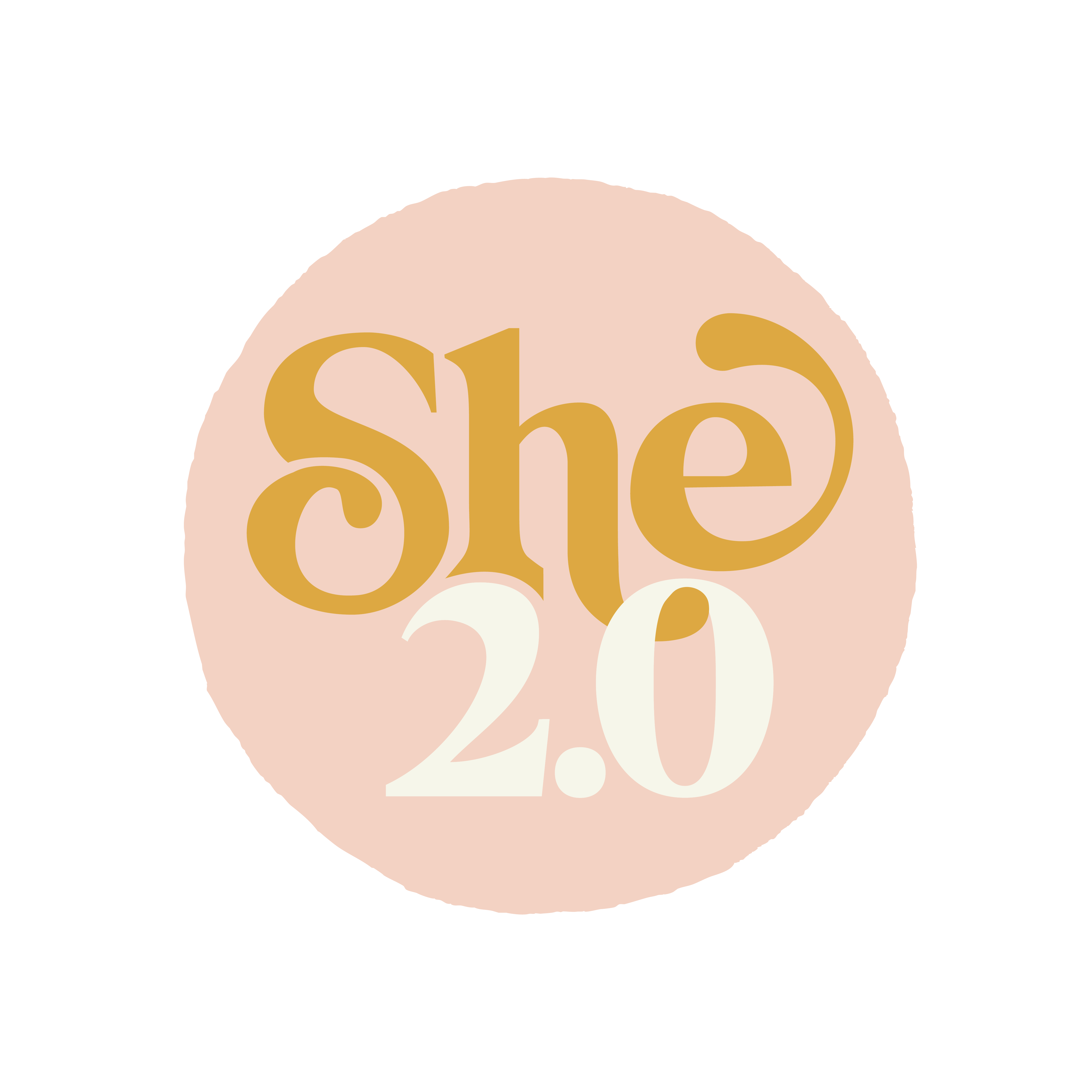 """The """"She's"""" behind She2.0"""