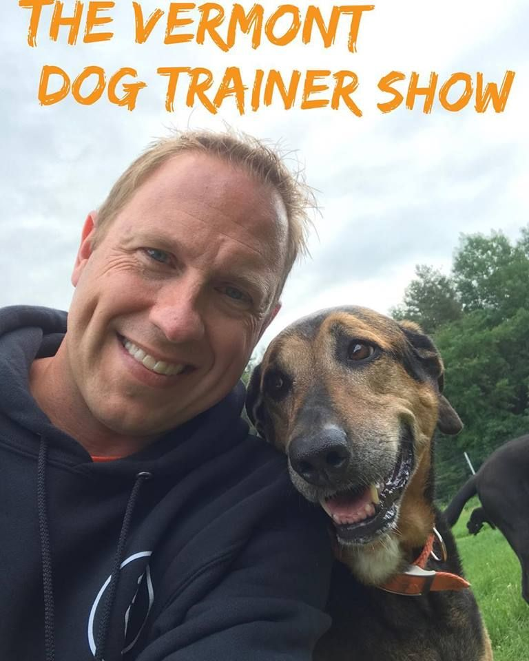 Vermont Dog Trainer - 90-Day Rule - Talking Dogs Radio