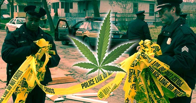 Imagine That! Police Solve Far More Murders After they Stop Arresting Cannabis Users
