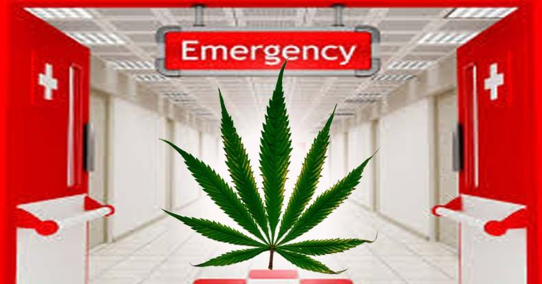 First Of Its Kind Study Shows Cannabis Could Be Used in ER to Treat Stroke and Cardiac Arrest