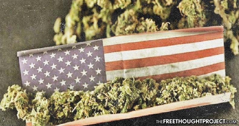 Landmark Bill Introduced in Congress Would Legalize Cannabis on Federal Level