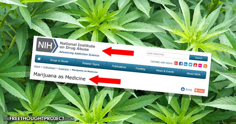For the First Time Ever, the Federal Govt is Referring to Marijuana as Medicine