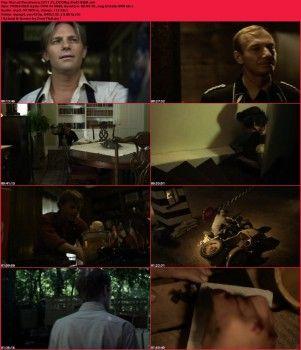 Powrót do bezpiecznej kryjówki / War of Resistance (2011) PL.DVDRip.XviD.AC3-sav / Lektor PL