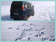 冰天動地東北遊Vol. 1 – 哈爾濱東升穿越雪鄉