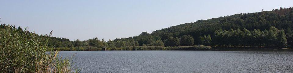 Csór-hegy - víztárazó