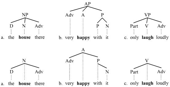 Branching picture 3