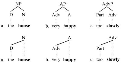 Branching picture 1