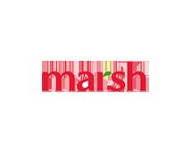 Partner-marsh.png