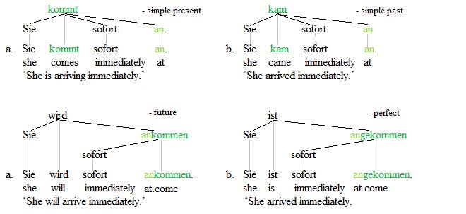 Separable verbs trees 1