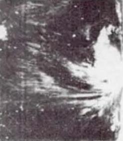 9月2日集结在巴士海峡以东的超强台风露比