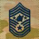 USSF OCP E9d temp.png