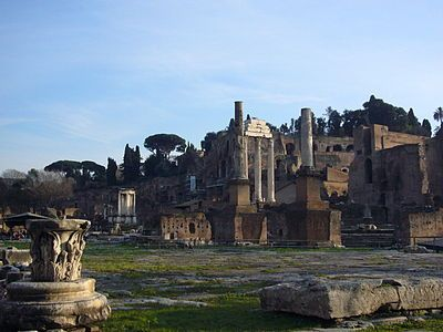 The Roman Forum (Latin: Forum Romanum) was a rectangular forum at the heart of the city of Ancient Rome. The Forum was used for military triumphs, elections, criminal trials, gladiatorial matches, and as a meeting- and business-place. The Forum survives today in ruins, and is the oldest structure in the modern city of Rome.