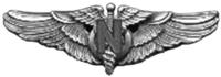 USAAF Flight Nurse Wings.png